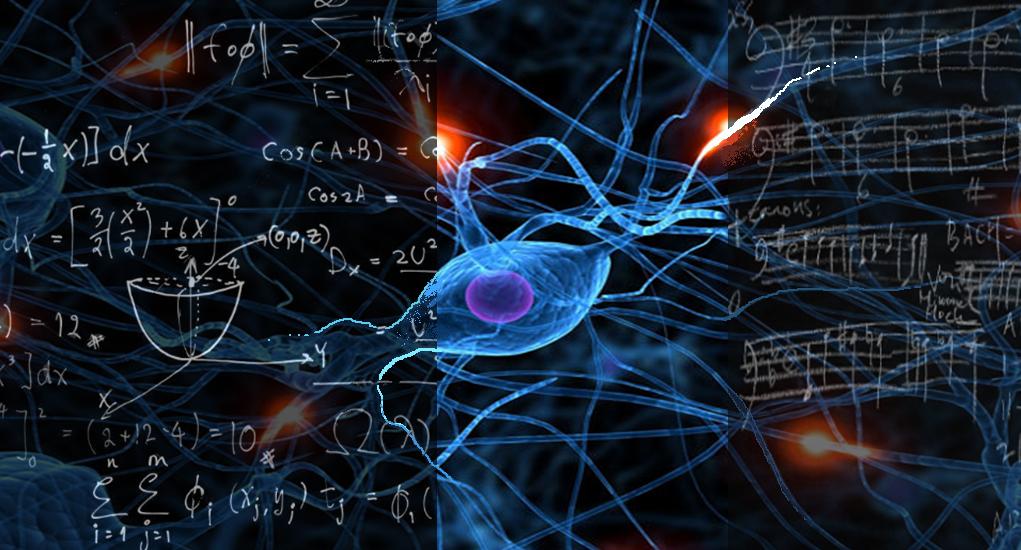 Why Educators Trained In Neuroscience >> Training Bernardo Facta Communication